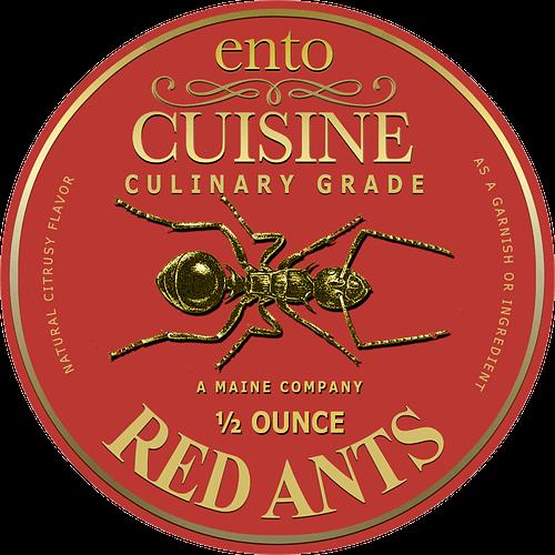 Gourmet Red Ants