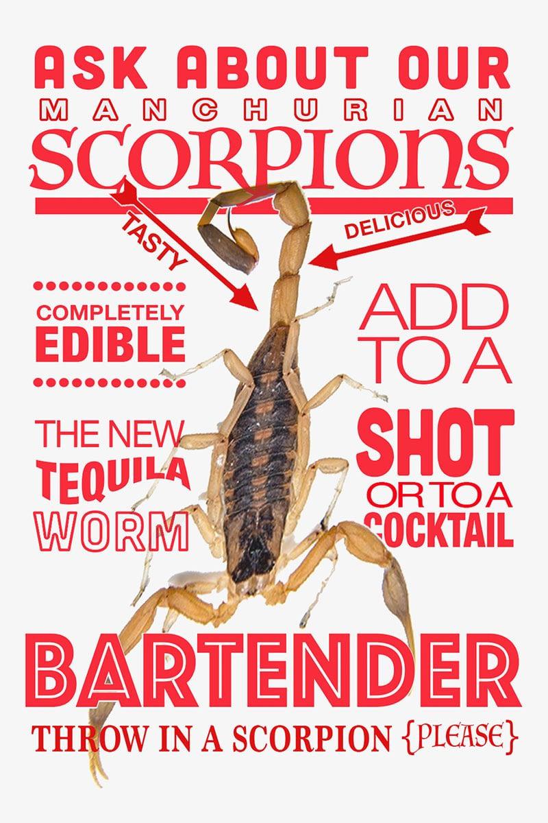 Real Scorpions Shot